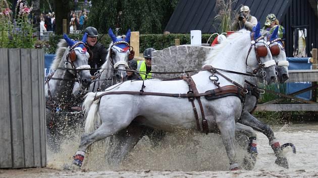 Národní hřebčín Kladruby nad Labem uspěl na mistrovství Evropy.