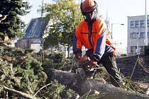 Ke stavbařům se v Tyršových sadech přidali i dřevorubci