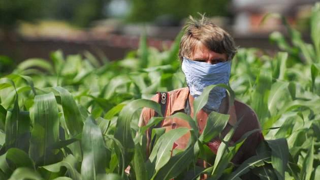 Redaktor se chrání před ptačí chřipkou