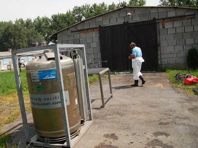 V Tisové začala likvidace chovu krůt napadeného ptačí chřipkou.