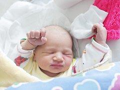 Simona Šimečková se  se narodila 29. dubna v 13:42 hodin. Měřila 51 centimetrů a vážila 3710 gramů. Maminku Janu u porodu podpořil tatínek Jiří a rodina je z Pardubic.