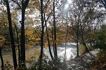 Procházka u řeky Chrudimky v Pardubicích.
