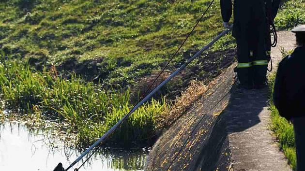V Labi v Pardubicích bylo nalezeno bezvládné tělo muže.