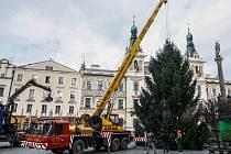 Strom pro Pardubice dorazil na Pernštýnské náměstí v pondělí.