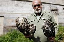Ornitolog ukazuje nález tří mrtvých dravců