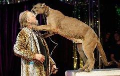 Do Pardubic zavítal cirkus.