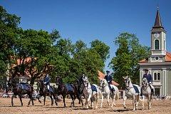 Den starokladrubského koně v Národním hřebčíně Kladruby