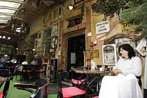 Café Bajer
