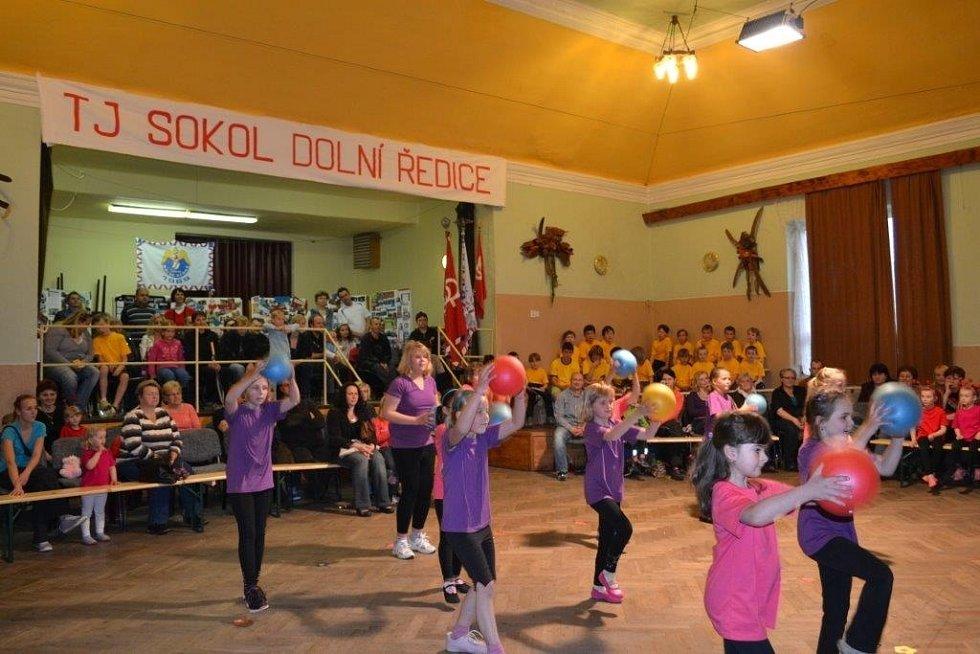 45 let Sokola oslavili v Dolních Ředicích