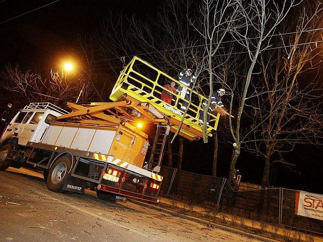 Strom spadlý na trolejové vedení museli odstranit až přivolaní hasiči