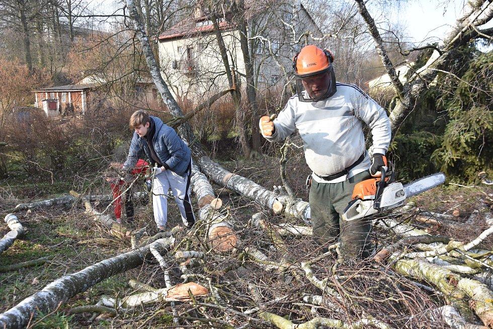 Do práce místo školy. V Rychnově na Moravě studenti uklízí obec a les po kůrovcové kalamitě.