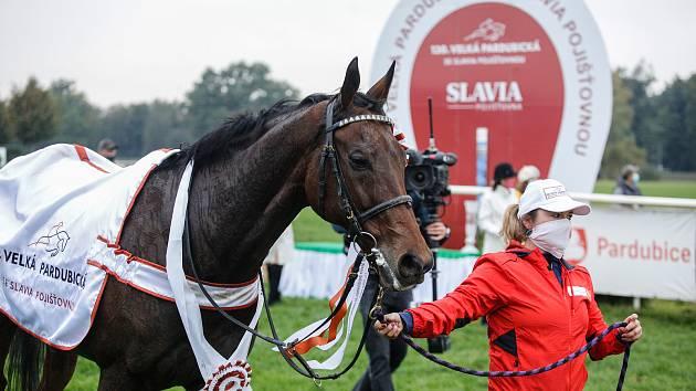 Hegnus s Lukášem Matuským zvítězili ve 130. Velké pardubické se Slavia pojišťovnou.
