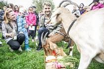 Křest zvířat ve spojilské Apolence. Herec Josef Pejchal kmotroval kozy.