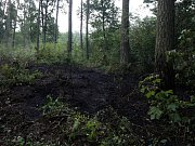 Další čin žháře nebo jen nedbalost? Tentokrát hořela tráva v Černé u Bohdanče.