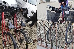I jízdní kola mají své dvojníky