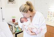 EMA LERACHOVÁ se narodila 8. února v 10 hodin a 12 minut. Měřila 50 centimetrů a vážila 3300 gramů. Maminku Martinu podpořil u porodu tatínek Petr. Rodina bydlí v Pardubicích.