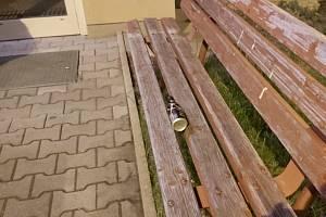 Na lavičce je bomba, volala důchodkyně v Pardubicích. Byla to lahev. Foto: MP Pardubice