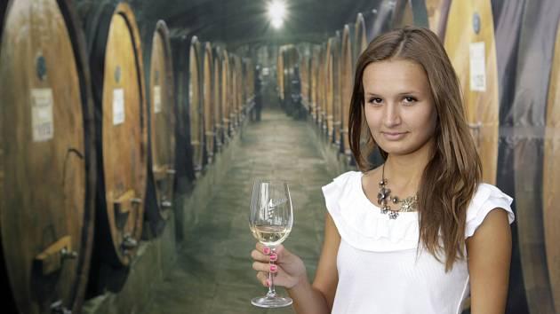 Na zámku v Pardubicích se bude ochutnávat víno a hrát hudba.