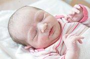 AGÁTA BALADOVÁ se narodila 7. května přesně v 15 hodin. Měřila 48 centimetrů a vážila 2990 gramů. Maminku Zdenu podpořil u porodu tatínek Petr. Rodina bydlí v Pardubicích. Doma na nového sourozence čeká šestiletý Štěpán.