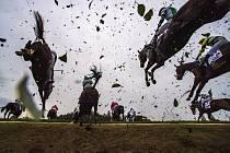 Koně překonávají Taxisův příkop.