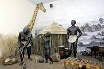 Slavnostní otevření holického Muzea Emila Holuba