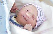 VOJTĚCH SHEJBAL se narodil 14. února v 1 hodinu a 34 minut. Měřil 53 centimetrů a vážil 4100 gramů. Rodiče Lucie a Pavel bydlí v Dolní Rovni.
