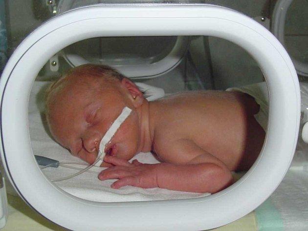 Miroslav Lachman se narodil 4. září v 18.45 hodin. Měřil 42 cm a vážil 2 kg.  Maminka Hana a tatínek Miroslav ze Svojšic se určitě radují z novopečeného přírůstku do rodiny.