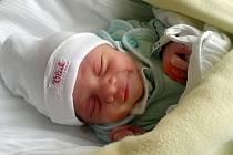 Pavel Plachý se narodil 29. července v 16.44 hodin. Měřil 49 centimetrů a vážil 2890 gramů. Rodiče Petra a Jiří bydlí v Pardubicích.