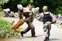Zkouška obrany psovoda při přepadu ze zálohy. Argo obstál na výbornou a v celkovém pořadí se umístil na prvním místě!