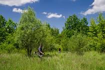 Bývalý vojenský prostor Červeňák v Pardubicích bude posekán.