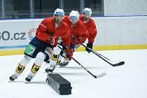 První trénink hráčů HC Dynamo na ledě v pardubické enteria areně.