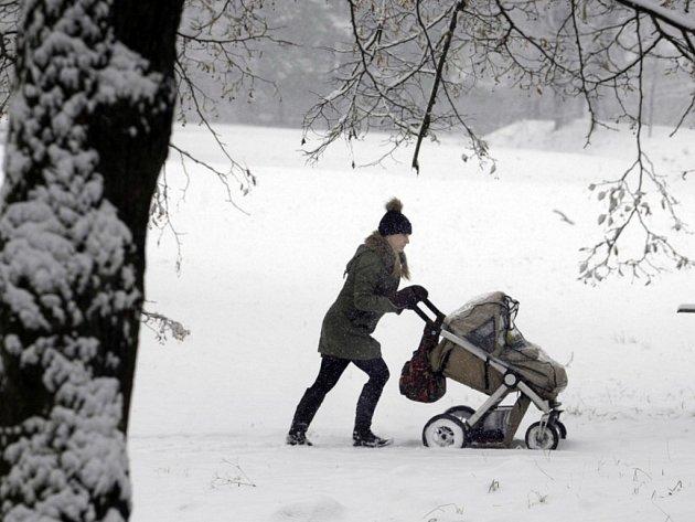 Sníh poprvé v roce 2013 zasypal Pardubice.