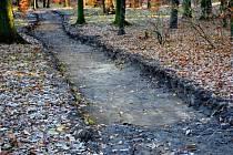 Ve Studáneckém lese se dočkají také nových cest.