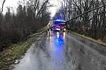 Hasiči likvidují spadlé stromy po celém kraji.