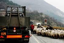 Zásobovací kolona pro základnu Šajkovac v Kosovu se vydala na cestu z Pardubic