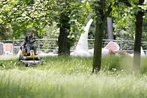Bubeníkovy sady už zase budou připomínat městský park. Přerostlá tráva, ze které občas vykoukly chodníky a lavičky, už dostává od sekaček co proto.