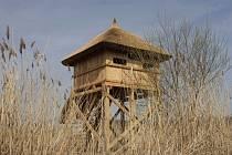 Ptačí pozorovatelna u Lázní Bohdaneč