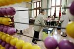 PRVNÍ VOLIČI. Tak to vypadalo krátce po otevření volebních místností v pardubické Základní školy Bratranců Veverkových.