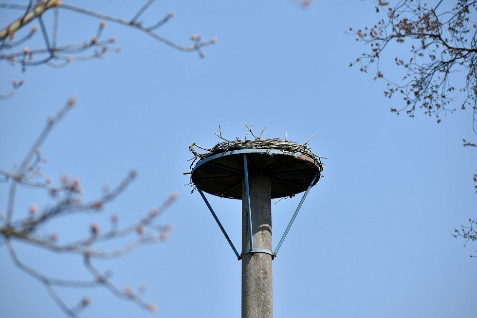 Čapí hnízdo v Dřítči.