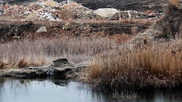 Jezírko v bývalé cihelně v Mikulovicích na Pardubicku