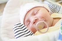 THEA ČAPOUN se narodila 12. května v 10:45 hodin. Měřila 50 centimetrů a vážila 3560 gramů. Maminku Terezu u porodu podpořil tatínek Jan a doma v Pardubicích čeká Kryštof (6) a Adéla (21).