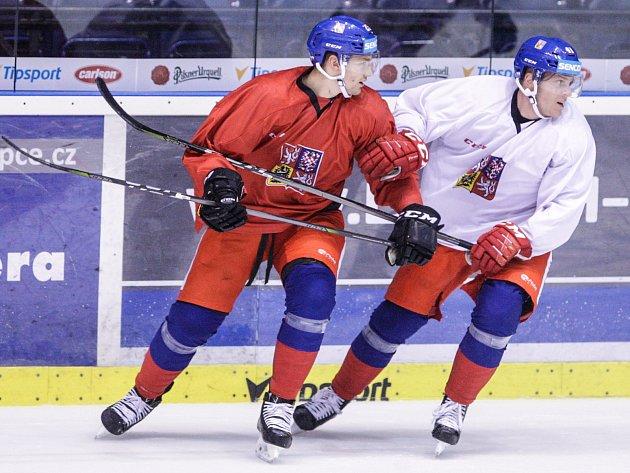 Trénink České hokejové reprezentace před Carlson hockey games vpardubické Tipsport areně.