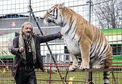 Cirkus - Ilustrační foto