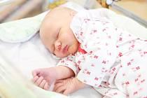 MAGDALÉNA SEJKOROVÁ se narodila 15. června v 10 hodin a 37 minut. Měřila 51 cm a vážila 3520 g.