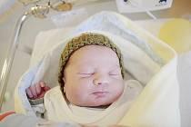 Ondřej Vízner se narodil 25. ledna v 16:15. Měřil 51 centimetrů a vážil 3700 gramů. Maminku Romanu u porodu podpořil tatínek Jaroslav a rodina bude bydlet v Hradišti na Písku.