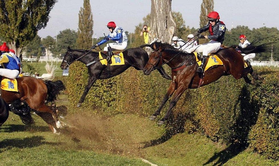 Sedmý triumf. Josef Váňa starší s Tiumenem zvítězil v jubilejní 120. Velké pardubické. Druhý doběhl Amant Gris a třetí skončila bělka Sixteen.