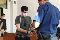 Umlátil ho mobilem a tělíčko dvouměsíčního chlapce ukryl v křoví. Za vraždu kojence dostal muž 15 let.