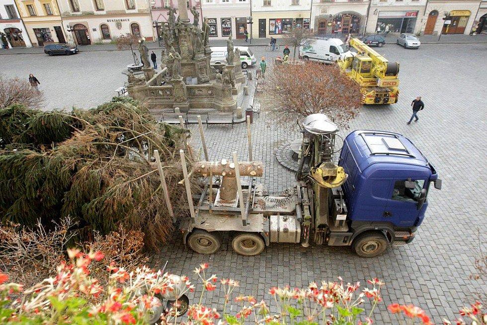 Na Pernštýnské náměstí dorazil vánoční strom.