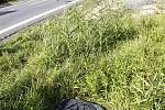 Srážka osobního vozidla s autobusem ve Chvojenci si vyžádala těžké zranění řidičky osobního vozu