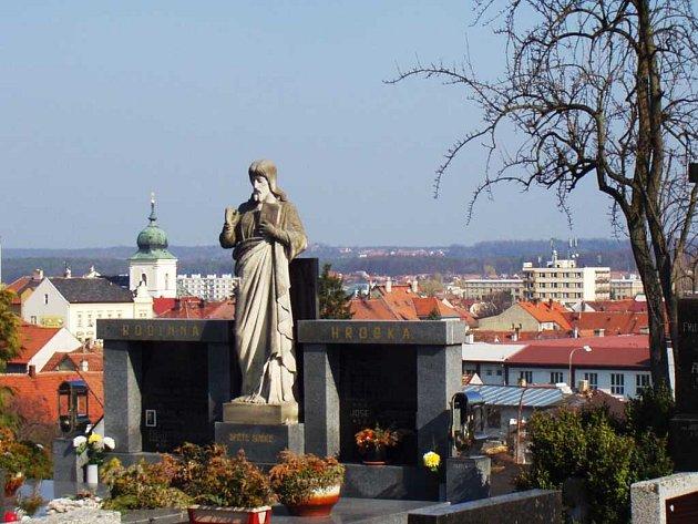 Vykácením stromořadí okolo hřbitova se otevřel malebný pohled na město